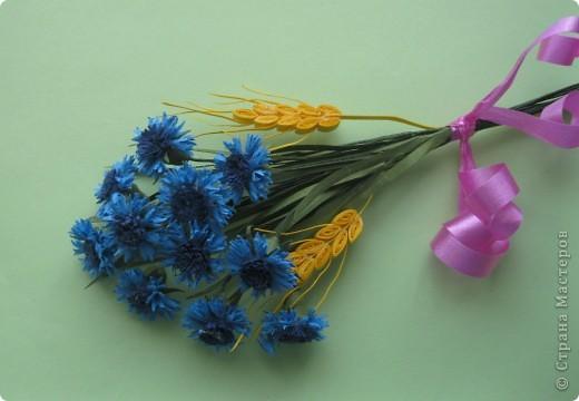 В одной из древнеримских легенд говорится, что цветок этот получил свое название в честь синеглазого юноши по имени Цианус, который был поражен его красотой, собирал эти синие цветы и плел из них гирлянды и венки.  фото 4