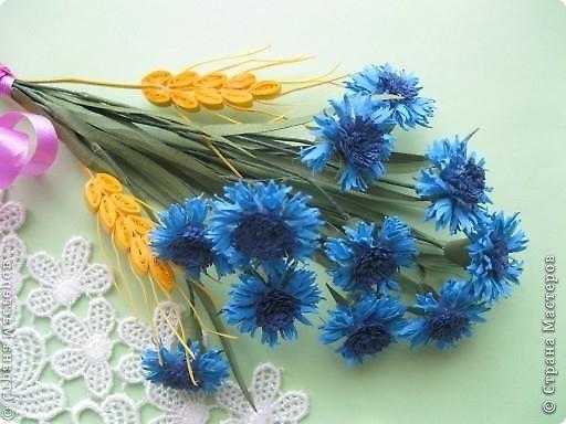 В одной из древнеримских легенд говорится, что цветок этот получил свое название в честь синеглазого юноши по имени Цианус, который был поражен его красотой, собирал эти синие цветы и плел из них гирлянды и венки.  фото 1