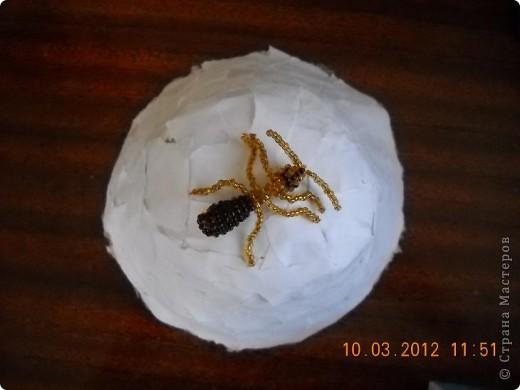 Вот мой муравей возле своего муравейника. фото 5