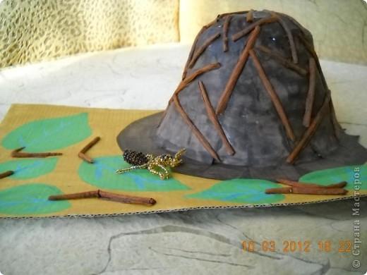 Вот мой муравей возле своего муравейника. фото 7