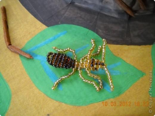 Вот мой муравей возле своего муравейника. фото 3