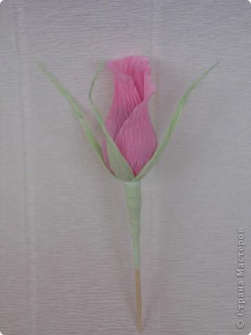Бутоны роз можно сделать из различных материалов... Я предпочитаю заворачивать конфетки в гофробумагу, придавая вид бутона розы. фото 4