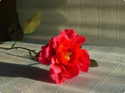 мне выпал день 23 апреля день Шекспира . в интернете нашла информацию , что это праздник книги и розы. Решила всё соединить , вот что получилось 23 апреля - ДЕНЬ СВЯТОГО ГЕОРГИЯ «Праздник розы и книги»  Истоки этого праздника уходят корнями в далекий 18 век. Множество версий возникновения этой оригинальной традиции до сих пор не могут внести ясность в суть вопроса. Тем не менее, из года в год, в этот день влюбленные юноши дарят девушкам алые розы, и, в ответ, получают книгу, как знак любви и верности. В своем роде, праздник Святого Георгия - это праздник влюбленных, каталонский аналог Дня Святого Валентина. Кроме того, Святой Георгий является покровителем Каталонии. В 1995 году организация ЮНЕСКО вместе с Правительством Каталонии утвердила 23 апреля Днем Книги и Авторских прав.  фото 8