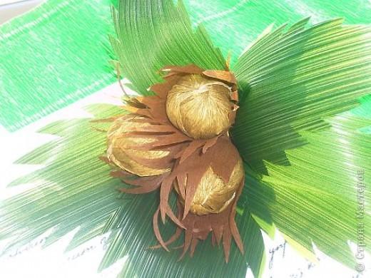 Это  второй праздник  который выпадает на этот день. День ореха по гороскопу друидов. фото 1