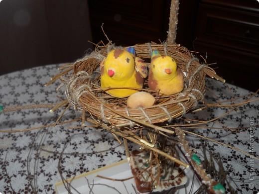 Вот такое гнездо получилось фото 1