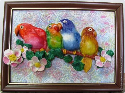 с детства попугайчики являются моими любимыми питомцами, поэтому создание картины посвященной этим милым птичкам стало для меня приятным творческим процессом. Вдохновили же на создание данной работы добрые и красочные открытки Пенни Паркер . А вот характер попугайчиков очень хорошо отражен в этом стихотворении: Попугай сидит на ветке Яркой красочной расцветки. Он, конечно, настоящий И по-русски говорящий. Иногда кричит по- птичьи. Птица всё же! Для приличия Замолчит минут на пять, А потом - опять кричать!  автор: В. Остров  фото 1