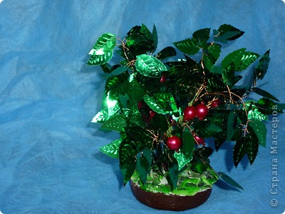 """Итальянцы называют гранат """"мелеграно"""" (если перевести дословно - «яблоко из зёрнышек»).  Дерево граната родом из  Персии. Как ни странно, но плод граната - это невероятно разросшаяся субтропическая ягода. фото 7"""