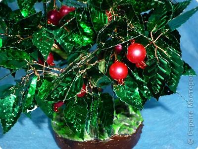 """Итальянцы называют гранат """"мелеграно"""" (если перевести дословно - «яблоко из зёрнышек»).  Дерево граната родом из  Персии. Как ни странно, но плод граната - это невероятно разросшаяся субтропическая ягода. фото 2"""