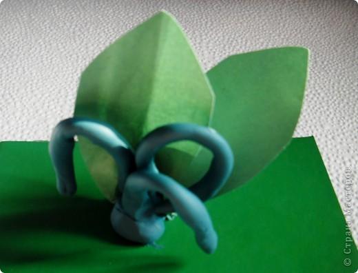 Белые горошки на зеленой ножке ( загадка) фото 3