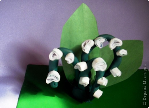 Белые горошки на зеленой ножке ( загадка) фото 1