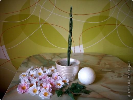 День Яблони... Сразу представила цветущий яблоневый сад... аромат цветков... пчелки собирают нектар... тепло и радостно на душе!!! Какая красота, так здорово!!!   фото 2
