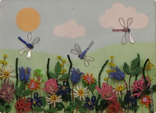 Как хорошо солнечным летним днём погулять по лесной полянке, полюбоваться растущими там цветами, вдохнуть их аромат, послушать как звенят прозрачными крылышками веселые стрекозы.  фото 1