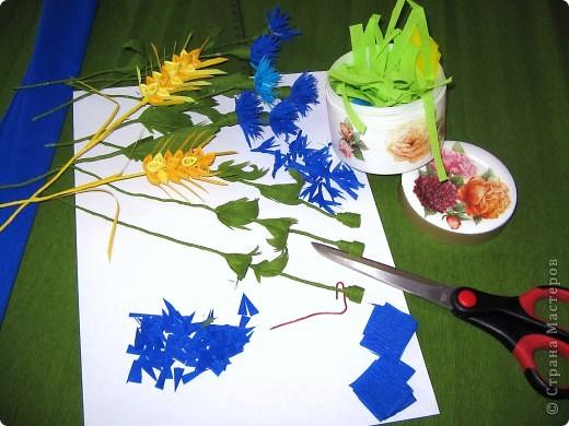 Как много полевых цветов, Их все лишь единицы знают, А вот про брызги васильков Стихи и песни сочиняют... В. Кокорев Васильки, символизирующие синий цвет (существуют даже выражения «васильковый цвет», «васильковые глаза»), бывают не только синими, но и розовыми, белыми, пурпурными, лиловыми, желтыми. Род Centaurea насчитывает около 700 видов васильков. Название рода произведено от греческого мифа, согласно которому кентавр Хирон использовал васильки с лечебной целью. Centaurea – цветок кентавра. фото 2