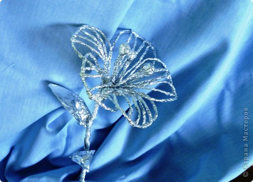 Волшебный цветок, с помощью которого русалки заманивают девушек. Я думаю, что он выглядит вот так. фото 1