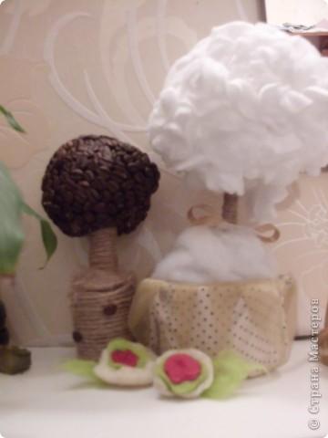 Сделала кофейное деревце...)Надеюсь понравиться))) фото 3