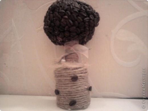 Сделала кофейное деревце...)Надеюсь понравиться))) фото 1