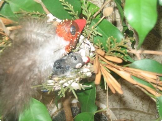 Для конкурса я сделала семью птичек. В гнезде 3 яйца и 1 птенчик, мама и папа соловьи. фото 5