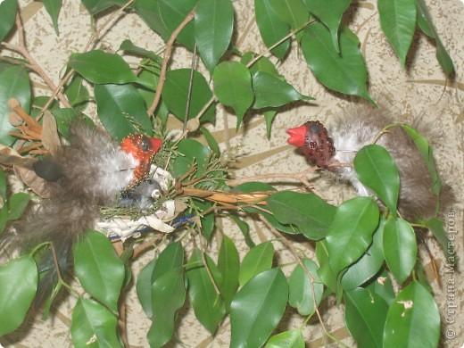 Для конкурса я сделала семью птичек. В гнезде 3 яйца и 1 птенчик, мама и папа соловьи. фото 6