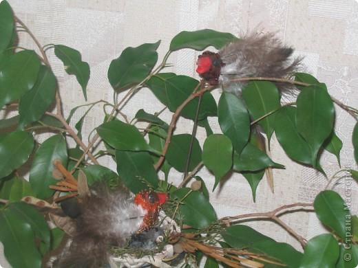 Для конкурса я сделала семью птичек. В гнезде 3 яйца и 1 птенчик, мама и папа соловьи. фото 1