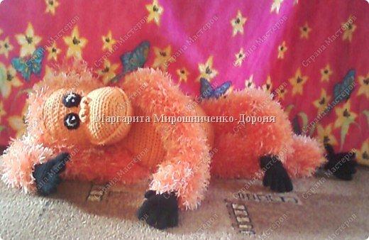 Добрый орангутанг Олимп фото 2