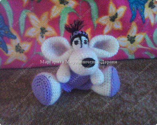 Мыша Боб фото 2