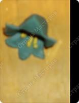 Эх, звоночки, синий цвет,  с языком, а звону нет.                             В.Фетисов фото 11