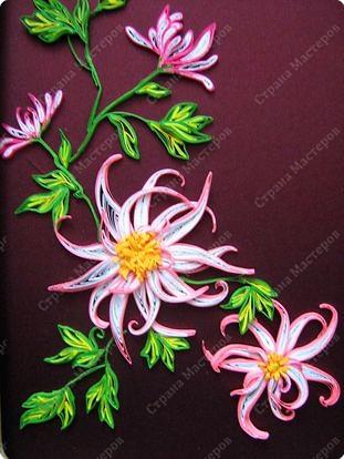 Хризантемы - цветы осени фото 2