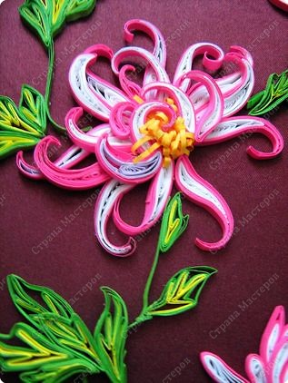 Хризантемы - цветы осени фото 4