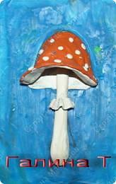 Маленький, удаленький Сквозь землю прошел, Красну шапочку нашел.                          (Гриб)  фото 8