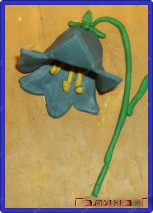 Эх, звоночки, синий цвет,  с языком, а звону нет.                             В.Фетисов фото 12