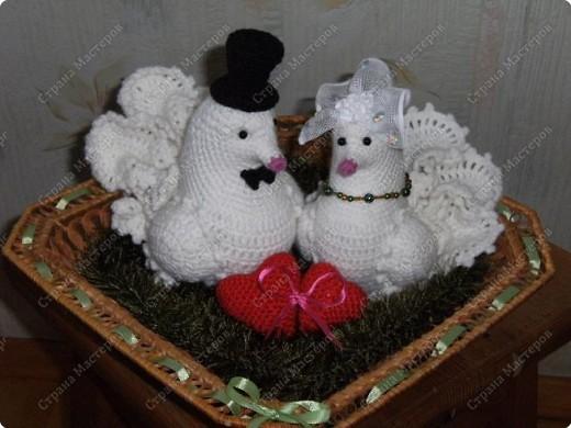 Красивых два влюбленных голубка!