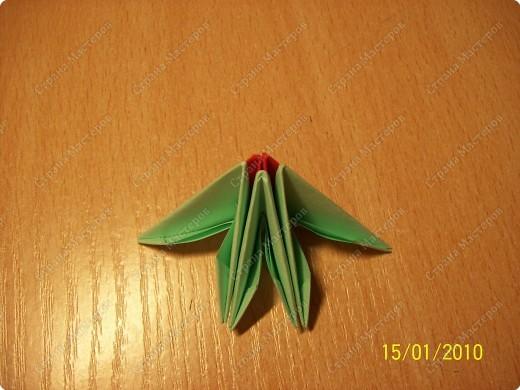 А вот и мой первый мастер-класс! Ура-ура! =) Заинтересуясь этой техникой, я решила воодушевить вас на подвиги и сделать вместе со мной вот такую скалярию! Делается она достаточно просто, особенно по сравнению с объемными фигурами, исполненными в технике модульного оригами!  фото 4