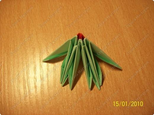 А вот и мой первый мастер-класс! Ура-ура! =) Заинтересуясь этой техникой, я решила воодушевить вас на подвиги и сделать вместе со мной вот такую скалярию! Делается она достаточно просто, особенно по сравнению с объемными фигурами, исполненными в технике модульного оригами!  фото 5
