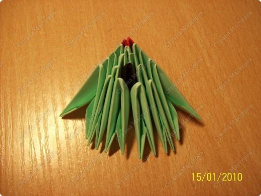 А вот и мой первый мастер-класс! Ура-ура! =) Заинтересуясь этой техникой, я решила воодушевить вас на подвиги и сделать вместе со мной вот такую скалярию! Делается она достаточно просто, особенно по сравнению с объемными фигурами, исполненными в технике модульного оригами!  фото 7