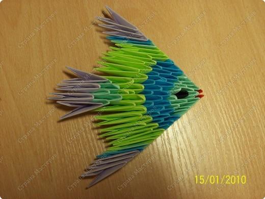 А вот и мой первый мастер-класс! Ура-ура! =) Заинтересуясь этой техникой, я решила воодушевить вас на подвиги и сделать вместе со мной вот такую скалярию! Делается она достаточно просто, особенно по сравнению с объемными фигурами, исполненными в технике модульного оригами!  фото 19