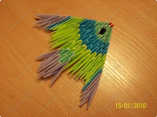 Мастер-класс Оригами китайское модульное мк Рыбка-скалярия Бумага фото 20