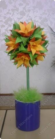 Цветущее дерево)))