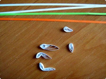 Для цветочка нам понадобятся 4 длинные полоски (лист формата 4-А). Одну полоску разрежьте пополам.  Закрутите. фото 3