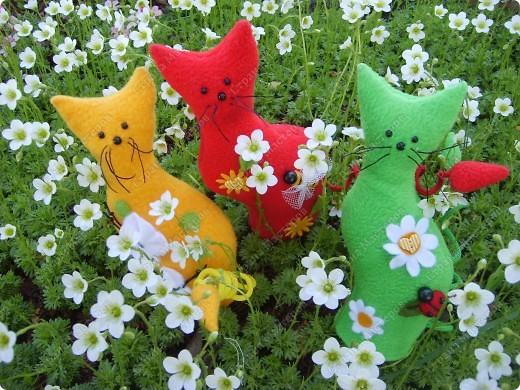А у меня - букет котов Изумительной красы, И, в отличье от цветов, Он мяукает в усы.   Я несу букет котов, Дай скорее вазу. Очень свежие коты - Это видно сразу! Юнна Мориц фото 1