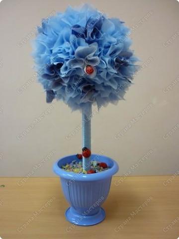"""мне так понравилось делать""""фунтики""""(букет из цветов) и вот такое дерево-счастье у меня получилось  фото 2"""