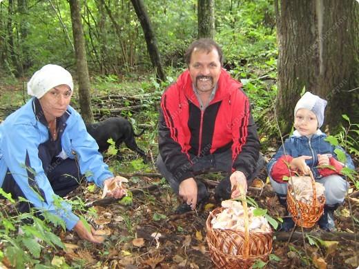 вот решили пойти за грибами фото 2