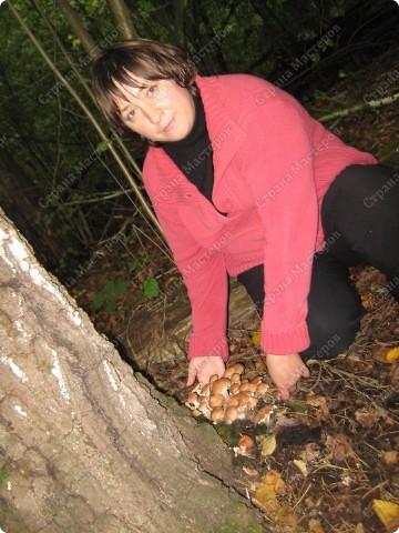 вот решили пойти за грибами фото 8