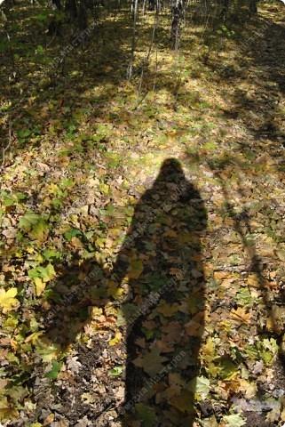 Пришла прекрасная осенняя пора, Прошли дожди, настало бабе лето. На солнце заискрилася листва, Деревья, словно в золото одеты. Лес замер, тишина и благодать, Берёзы в праздничном наряде. Вот и листья стали опадать, Кружась в осеннем листопаде.  Провели мы свои выходные в отдыхе и с пользой... фото 12