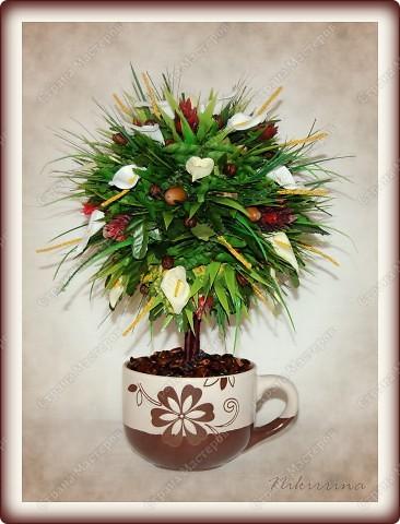 Это европейское деревце отлично впишется в интерьер, где преобладают тёплые тона. Наполнит дом бодрящим ароматом, потому как содержит зёрна натурального кофе. фото 1