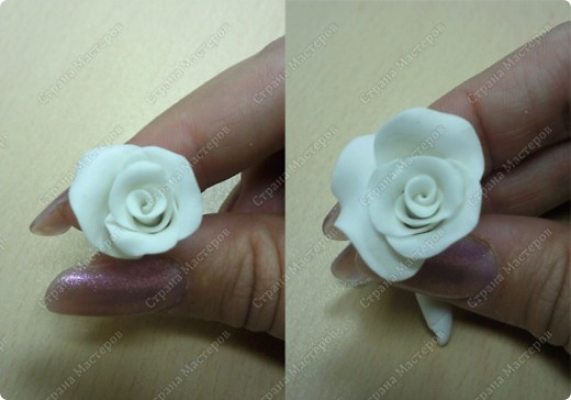 Просмотрела много работ мастеров, разные есть розы...... хочу поделиться как я делаю свои фото 6