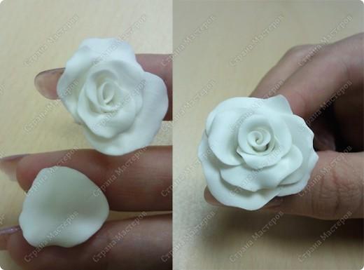 Просмотрела много работ мастеров, разные есть розы...... хочу поделиться как я делаю свои фото 7