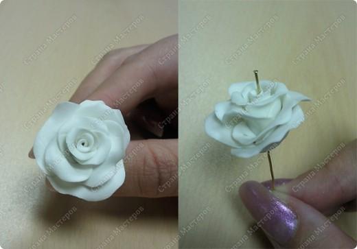 Просмотрела много работ мастеров, разные есть розы...... хочу поделиться как я делаю свои фото 8