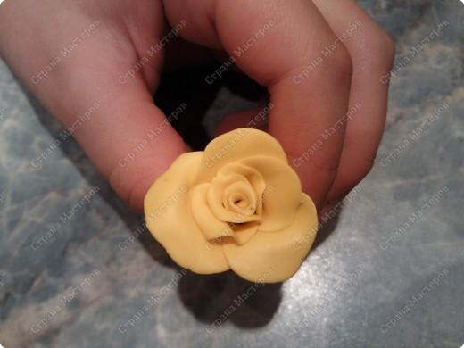 Просмотрела много работ мастеров, разные есть розы...... хочу поделиться как я делаю свои фото 13