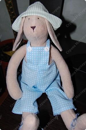 А вот и Мотик, забавный кролик в клечатом комбезе)))) фото 2
