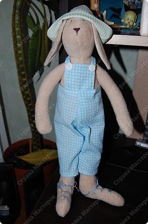 А вот и Мотик, забавный кролик в клечатом комбезе)))) фото 1
